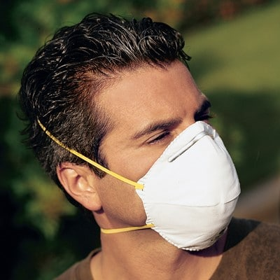 Disposable Respirator Masks, 20/Box